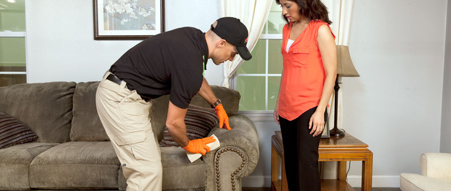 Stevensville, MD carpet upholstery cleaning