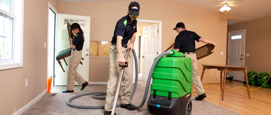 Stevensville, MD cleaning services